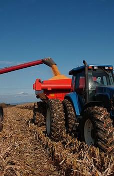 Créer du chômage : facile dans le monde agricole