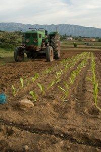 L'agriculture biologique, une réponse citoyenne pour préserver notre avenir !