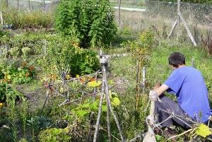 Week-end pour apprendre le jardinage bio
