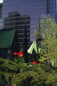Un jardin potager en centre ville