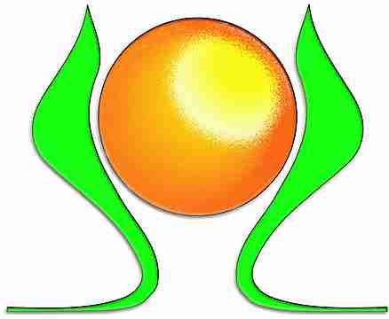 Logo Intelligence Verte